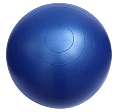 Fitterfirst 65cm Classic Exercise Ball